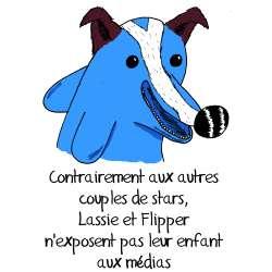 Sebh, tableau le fils de Lassie et Flipper